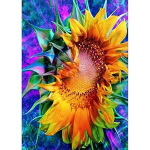 "WISREMT DIY Diamond Painting Kit Full Drill Embroidery Cross Stitch Arts Craft Canvas Wall Home Decor Craft for Adults or Kids 30x40CM (Single Sunflower, 11.8"" x 15.7"")"