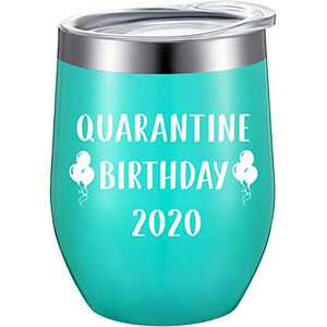 Quarantine Birthday Novelty Tumbler Mug, Funny Birthday Present Social Distance Quarantine Present with Straw and Brush, 12 oz Stainless Steel Vacuum Insulated Wine Tumbler (2020 Text Style)