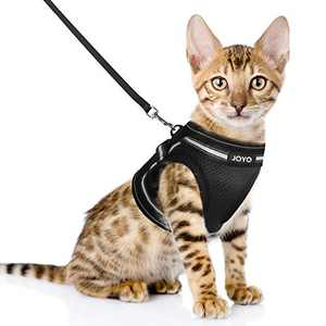 JOYO Small Cat Vest Harness, Breathable Soft Cat Harness and Lesh, Adjustable Easy Control Kitty Harness Escape Proof with Reflective Strap, Size M: Chest Girth:13.9-15.5 in, Weight 9-12 lb