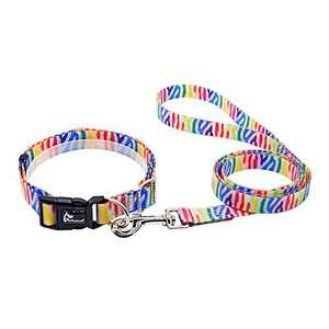 ANTECESSOR Dog Collar and Leash Set Durable Waterproof PVC Coated Nylon Pet Collar Adjustable Dog Collar for S/M/L Dogs with 4ft&5ft Dog Leash (S, Stripe)