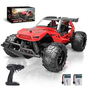 DEERC Remote Control Car, 2.4 GHZ RC Car, 25 KM/H Kids High Speed Fast Racing Monster Vehicle Truck Electric Hobby Toy with Two Rechargeable Batteries, RC Cars Toys for Boys Girl Kids Teens Adults