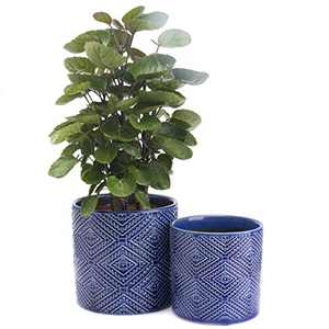 """KYY Ceramic Planters Garden Flower Pots Indoor 5.7"""" and 4.5"""" Modern Plant Containers with Drainage Hole for Succulents Set of 2 Outdoor (Royal Blue)"""