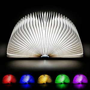 Catwalk Book Lamp - Folding Luminescent Book Shaped Light - Rechargeable Light Up Lamp - Wooden Open Book Lamp - Novelty Home & Office Décor - Foldable, Accordion Night Light for Booklovers