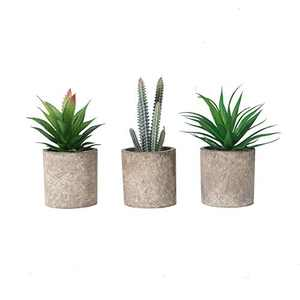 THE BLOOM TIMES Succulents Plants Artificial, Small Faux Succulents in Pots, Mini Fake Plants Potted Cactus Aloe for Home Shelf Indoor Greenery Decor, Set of 3
