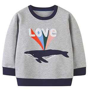 Funnymore Toddler Girl's Clothes Sweatshirt,Cotton Cute Crewneck Long Sleeve Top Outfit Grey Whale 4t
