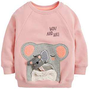 Toddler Girl's Clothes Sweatshirt,Cotton Pink Bear Long Sleeve Crew Neck Cute Top Outfit 4t