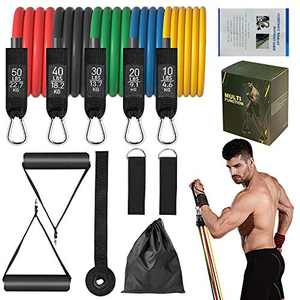 21°C Resistance Bands Set (11pcs), Exercise Bands with Door Anchor, Handles,Carry Bag, Stackable Up to 150 lbs, Legs Ankle Straps for Resistance Training, Physical Therapy, Home Workouts