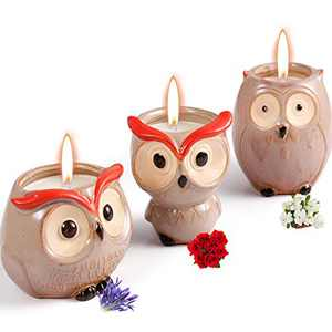 Scented Candles Sets Gifts for Women - 3 Pack Novelty Owl Natural Soy Candles for Home Scented, Aromatherapy Candles Bulk for Garden, Porch, Outdoor Patio Decor (Gardenia, Lavender, Rose)