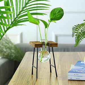CABINAHOME Desktop Glass Planter Bulb Vase with Retro Solid Wood Small Bench Frame for Hydroponics, Home, Office, Garden Wedding Decor (A vase)