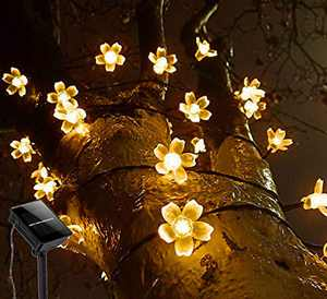 EEX Solar LED String Lights for Outdoor, 100 LED 39ft 8 Modes Waterproof Fairy Decorative Copper Wire Lights for Patio, Garden,Gate Yard, Christmas, Wedding, Party (Sakura Warm White)