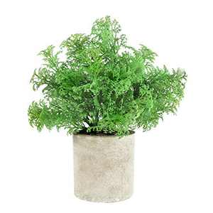 IFLOVE Small Fake Plants, Cute Artificial Potted Plant, Look Real Plastic Greenery in Pot for Bathroom Home Office Desk