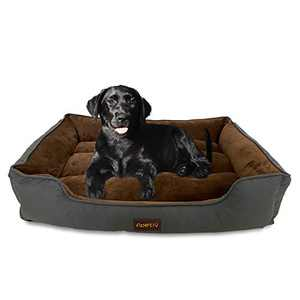 N/P Apetly Dog Bed pet Bed for Large Dogs and Cats,Bed with Machine Washable,Comfortable and Safety for Medium and Large Dogs (XXL, Grey)