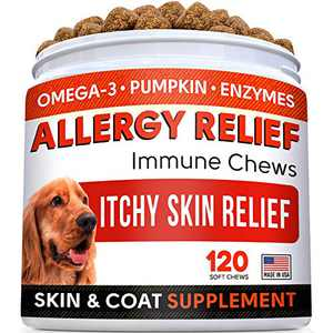 Allergy Relief Dog Treats w/ Omega 3 + Pumpkin + Enzymes + Turmeric - Itchy Skin Relief - Immune & Digestive Supplement - Skin & Coat Health - Anti-Itch & Hot Spots -Made in USA - Chicken Flavor Chews
