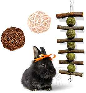 Rabbit Toys for Teeth, Handmade 100% Natural Organic Apple Sticks and Play Balls Bunny Chew Toys Pet Cage Accessories for Rabbits Guinea Pigs Chinchilla Bunny Degus Small Animals