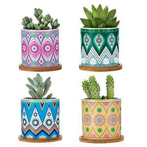 Succulent Pots with Drainage Hole Cactus Pots Bamboo Trays, Set of 4