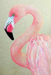 5D Diamond Painting Kits for Adults Full Drill Diamond Art for Home Decor,Kids Diamond Painting Set (DIY Flamingo Diamond Painting)- (30cmx40cm)