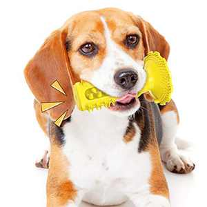 Squeaky Dog Toys Super Bite-Resistant Suction Cup Dog Float Toy Dogs Supplies Pet Chew Molar Stick Toothbrush That Brush Teeth by Himself New Material