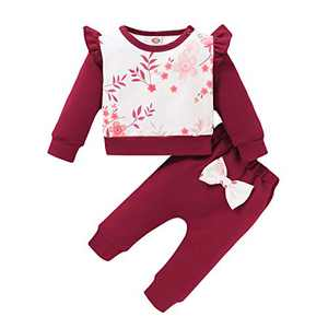 Baby Girls Clothes,2 Piece Outfits Infant Kids Toddler Long Sleeve Sweatshirt Pullover Blouse Casual Top Ruffle Printed T-Shirt Floral Pants Sets(Wine Red,3-6 Months)