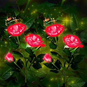 Solar Outdoor Lights, 2 Pack Garden Decor Lights Solar Powered Waterproof with 6 Roses Flowers, Garden Solar Lights Decorative Stake Lights for Garden, Courtyard, Backyard, Patio (Red)