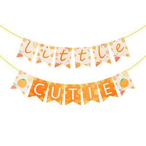 BeYumi Little Cutie Banners, Pre-Assembled Swallowtail Hanging Banner Garland Bunting Flags, Hey Cutie Tangerine Clementine Fruit Themed Party Decorations Supplies for Birthday Bridal Shower Wedding