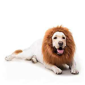 Dog Costume-A Funny Dog Lion Costume with Ears in Tan is Used for Christmas. Lion Mane for Dogs is Suitable for Medium and Large Dogs and Can Keep Warm.
