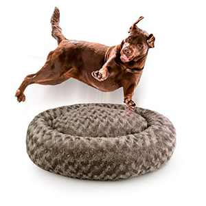 Dog Beds for Medium Dogs Calming Pet Bed for Small Dogs Bed Furniture Donut Round Anti Anxiety Dog Bed Doggy Bed Fluffy Fuzzy Cat Bed Cuddler Camas para Perros Khaki 32 Inch