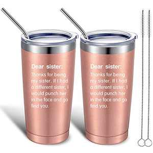 2 Pieces Sister Gifts from Sister Brother, Christmas Birthday Gifts for Sister, Friends, Big Sister, Little Sister, 20 oz Vacuum Insulated Wine Tumbler with Lids, Straws and Brushes