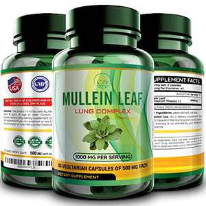 Mullein Leaf Capsules Extract - Herbal Lungs Supplement for Respiratory Health, Smokers Lung Cleanse | Vegan Pills