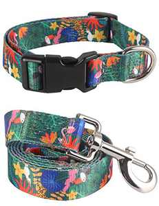 Impoosy 2PCS Rainforest Dog Collar and Funny Flamingo Leash Set Pet Gift Adjustable Dogs Floral Collars for Small to Large Pets (Large)