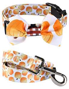 Impoosy Bowtie Dog Collars Funny Pet Adjustable Fall Pumpkin Collar with Bow for Small Medium Large Dogs Cats (X-Large)