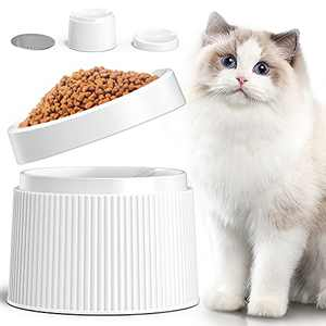 iPettie Elevated Cat Food Bowl Cat Dish, Tilted Pet Feeding Station with Stand for Small Dog, Made from Certified Food-Safe Plastics, Better Than Stainless Steel and Ceramic