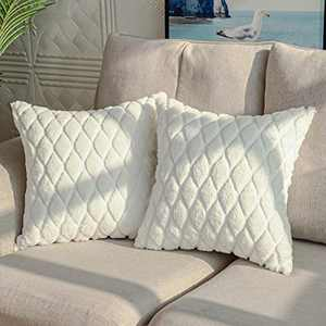 DEELAND Pack of 2 Decorative Throw Pillow Covers Soft Cozy Woven Velvet Plush Pillowcase Cushion Covers for Sofa Couch Bedroom