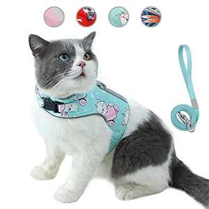 HAPPY HACHI Cat Lead and Harness Set for Walking Escape Proof, Pet Reflective Adjustable Vest Harness Outdoor Breathable Soft Mesh Puppy Kitten Leash with Innovative Anti-Lost Card(XS,Cyan)