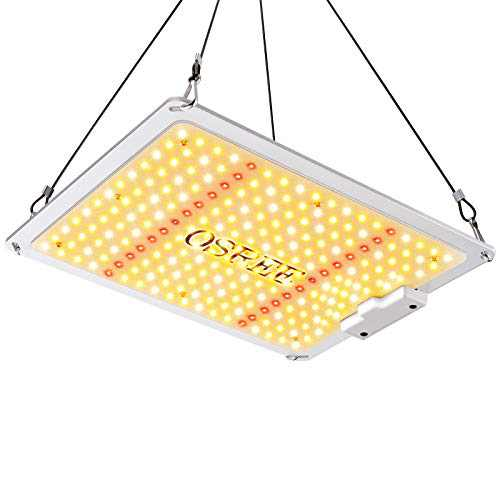 OSREE LED Grow Light QB1000 Sunlike Full Spectrum High PPFD Plant Lamp for Hydroponic Indoor Seeding Veg and Bloom Greenhouse Growing Light Fixtures ,3000K 5000K 660nm 760nm IR ,Dimmable,Cover 2x2ft