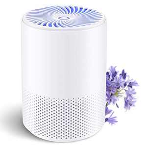 BOYON Air Purifier for Home, Air Purifier with 3-in-1 H13 True HEPA Filter, Desktop Air Cleaner with Light, Remove 99.97% Smoke Dust Pollen