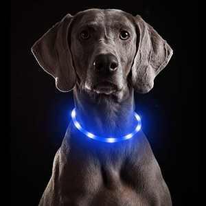 Light Up Dog Collars - Glow in The Dark Dog Collar, Adjustable Water Resistant Silicone Cuttable Puppy Collar, Dog Walking Lights for Small Medium Large Dogs (Blue-Silicone)