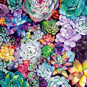 "Cupmod DIY 5D Diamond Painting Kits for Adults,Round Full Drill-Crystal Rhinestone Embroidery Cross Stitch,Mosaic Making Colorful Succulents Diamond Art,Home Decor 15.7""X15.7"""