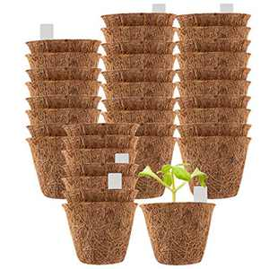 "36 Pack Coco Coir Planter Nursery Pots- 2.5"" Biodegradable Seedling Germination Peat Pot with Bonus 100 Plant Markers Eco-Friendly Plantable Seedlings Pots for Garden Plants Sprouting Transplanting"