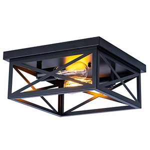 """Industrial Close to Ceiling Light Fixtures, 13"""" Farmhouse Flush Mount Black Cage Ceiling lamp for Kitchen Island Dining Room Bedroom Bathroom Entry,2-Lights,E26"""