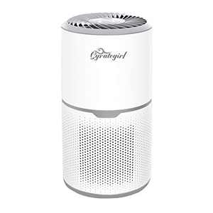 Gyrategirl HEPA Air Purifiers for Home with True HEPA Filters, Low Noise Air Cleaner with 3 Stage Filtration, High-Efficiency Air Purifier for Large Room Odor Smoke Dust Pets Hair