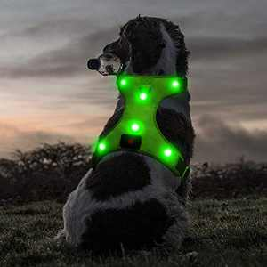 "Ezier Glowing LED Dog Harness- USB Rechargeable No-Pull Pet Harness, Adjustable Soft Padded Dog Vest, Mesh Reflective Suit for Small, Medium, Large Dogs(L [Neck:20.5""-28.5""; Chest:28.5""-42.5""], Green)"