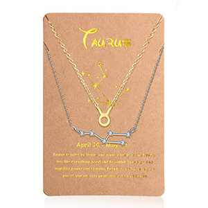 Hicarer 2 Pieces Zodiac Necklace Pendant 12 Constellation Necklace Gold Silver Astrology Horoscope Sign Chain with Constellation Card for Women Girl (Taurus)