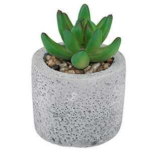 Hopewood Artificial Succulent Plants Fake Succulent Potted Finger Succulent in Cement Pot