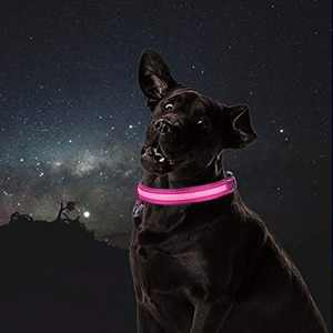 HEAKIM Led Dog Collar, Professional Waterproof Pet Collars, USB Rechargeable, Glowing Reflective Adjustable Strap, Flashing 7-Color Lights to Make Your Dog Visible & Safe Pink-L