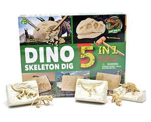 KITEENAL 5 in 1 Excavation Tool Mining DIY Assembly Model Digging Kit for Kids Geographic Paleontology Dinosaur Fossils Science & Educational Dig Toys Set Gift for Boys Girls Adults