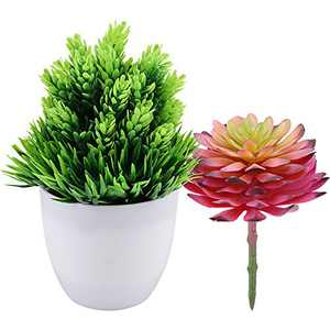 Hopewood Fake Plants in Light Pot-Faux Plants with Replacement Succulent deocr for Home (Two Flowers and One Pot)