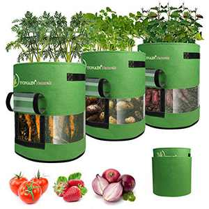 TONAIN Pro Plants Grow Bags - 3 Pcs 10 Gallon Big Vegetables & Strawberry Incubation Bag, Heavy Duty Thickened Non-Woven Fabric Pots with Handles