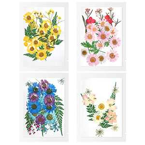 100Pcs Pressed Flowers for Resin Real Dried Pressed Flowers Leaves Natural Pressed Dried Flowers for Resin Jewelry Scrapbooking Candle Pendant Making