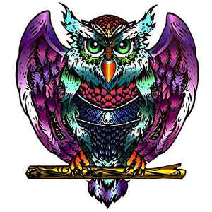 RALCH WYSOM Wooden Jigsaw Puzzles,Decorative Owl Wooden Puzzle 101 Unique Shape Jigsaw Pieces (6.3 х 7.4 in) ,Wooden Puzzles for Adults and Kids