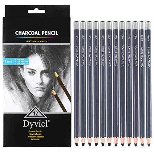 Dyvicl Professional Charcoal Pencils Drawing Set - 12 Pieces Soft Medium Hard Charcoal Pencils for Drawing, Sketching, Shading, Artist Pencils for Beginners & Artists